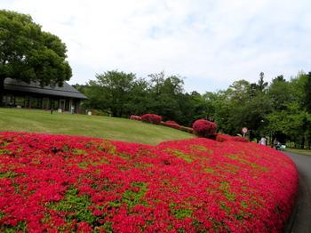 DIC川村記念美術館1253.jpg