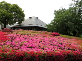 DIC川村記念美術館1254.jpg