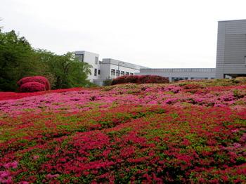 DIC川村記念美術館1327.jpg