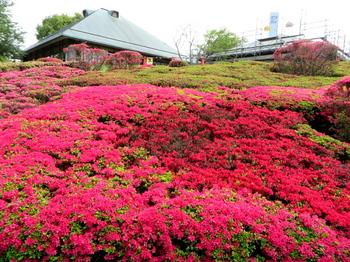 DIC川村記念美術館1338.jpg