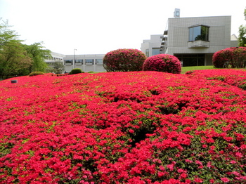 DIC川村記念美術館2970.jpg
