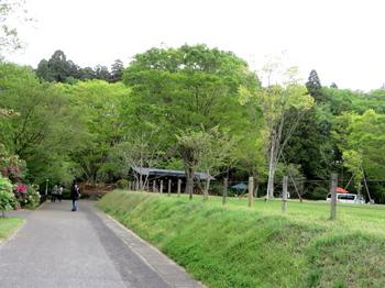 DIC川村記念美術館3104.jpg