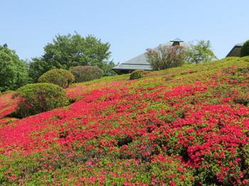 DIC川村記念美術館8317.jpg