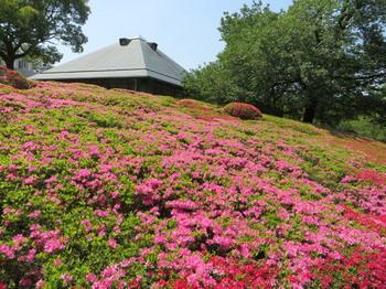 DIC川村記念美術館8335.jpg