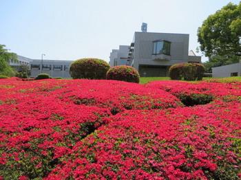 DIC川村記念美術館8337.jpg