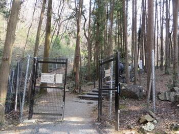 万葉自然公園7124.jpg