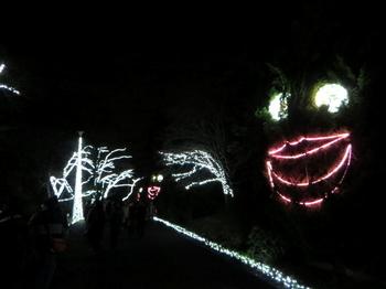 国営武蔵丘陵森林公園7746.jpg