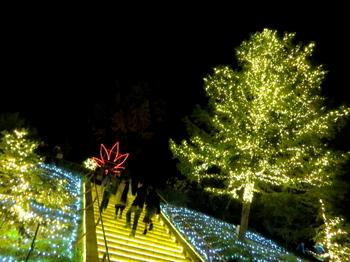 国営武蔵丘陵森林公園7750.jpg