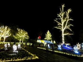 国営武蔵丘陵森林公園7768.jpg