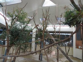 埼玉県こども動物自然公園9107.jpg