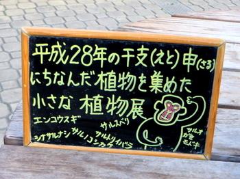 川口市立グリーンセンター9302.jpg