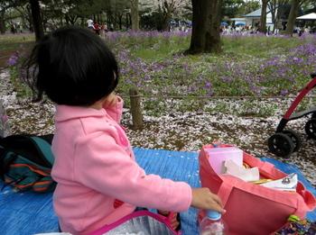 昭和記念公園0762.jpg