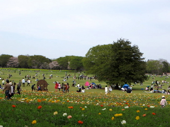 昭和記念公園0768.jpg