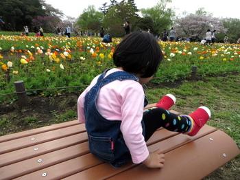 昭和記念公園0819.jpg