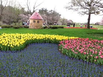昭和記念公園0885.jpg