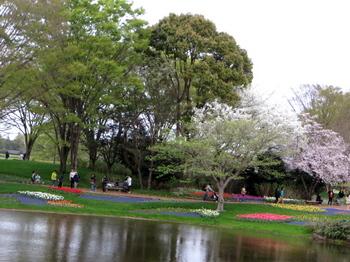 昭和記念公園0926.jpg