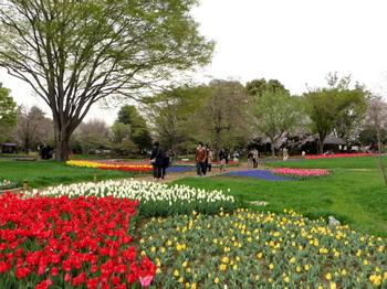 昭和記念公園0970.jpg