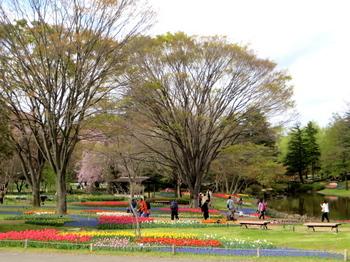 昭和記念公園1828.jpg