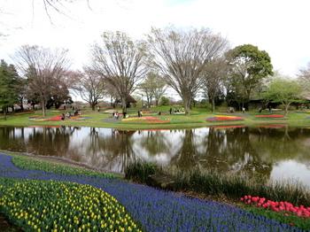昭和記念公園1878.jpg