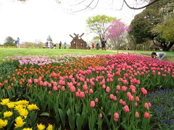昭和記念公園1947.jpg