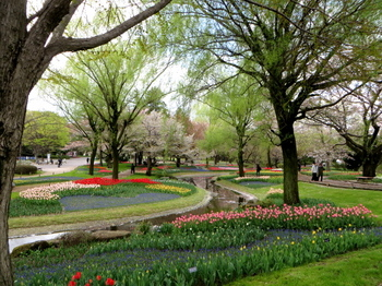 昭和記念公園1948.jpg