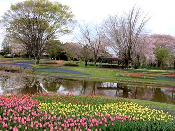 昭和記念公園2138.jpg
