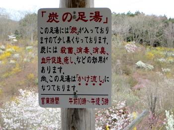 花の山0568.jpg