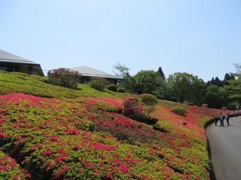 DIC川村記念美術館8325.jpg