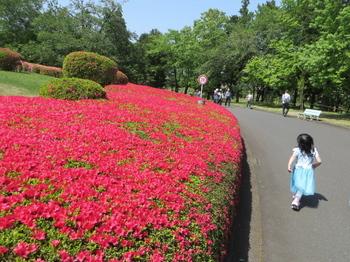 DIC川村記念美術館8348.jpg