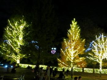 国営武蔵丘陵森林公園7767.jpg