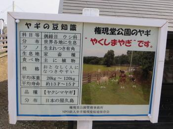 権現堂堤6507.jpg